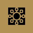 Suzie-Lightfoot-WOC-homepage-Icon-3